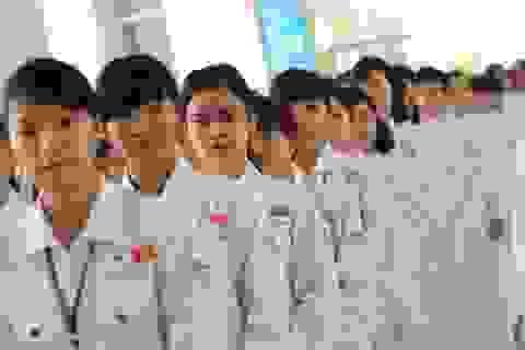 Thực tập sinh tại Nhật Bản: Tăng thời gian lên 5 năm, mở rộng nhiều lĩnh vực