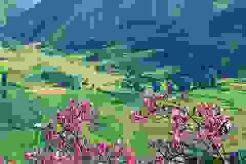 7 thung lũng đẹp như tranh ở Việt Nam