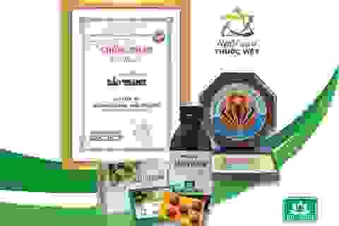 Bảo Thanh - Thuốc ho bổ phế, Top 20 Thương hiệu phát triển bền vững quốc gia