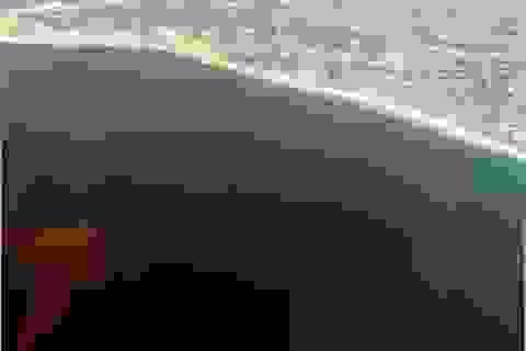Thủy triều đỏ không xuất hiện ngẫu nhiên mà có thể dự đoán trước