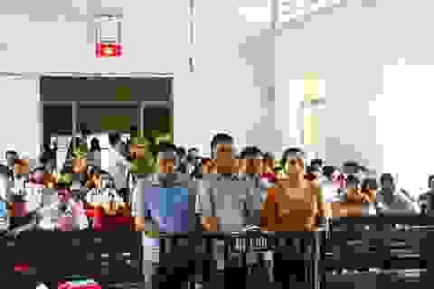 Trên 500 bị hại của MB24 Đắk Lắk được triệu tập đến tòa