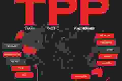 ANZ: TPP đổ vỡ chỉ mất đi cơ hội, chưa ảnh hưởng trực tiếp đến Việt Nam
