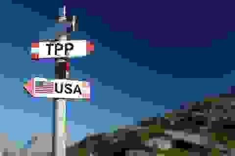 """Cơ hội Hiệp định TPP 11: Đã có tín hiệu """"tích cực"""" tại APEC"""