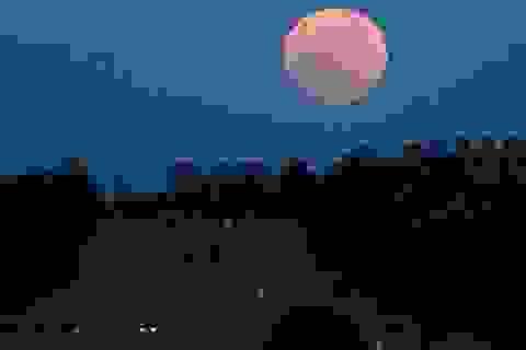Ra đường những đêm trăng tròn có nguy cơ tai nạn cao hơn