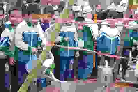 Hà Nội: Trường học sẽ có hơn 10.000 cây xanh trong năm mới