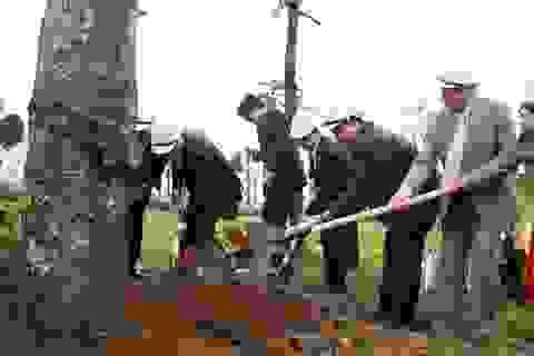 Hà Nội trồng gần nửa triệu cây xanh năm 2017