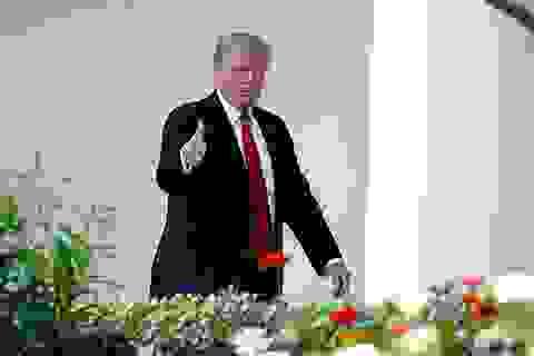 """Ông Trump """"bật mí"""" điều sẽ nói với Tổng thống Putin tại Nhà Trắng"""