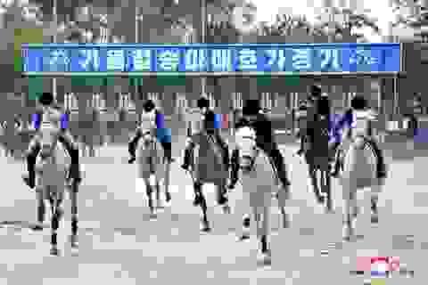 Thú vui giải trí mới của người Triều Tiên