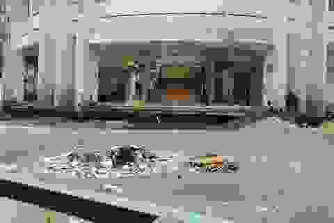 Ngôi trường gần 20 tỷ đồng bị bỏ hoang