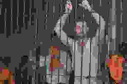 Đào hầm vượt ngục, tù nhân khoe tận hưởng cuộc sống ở Dubai