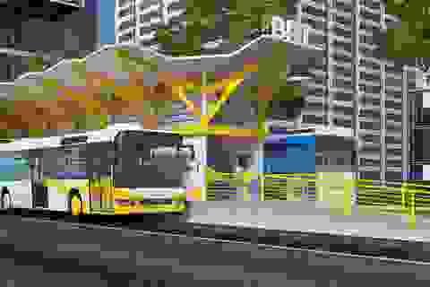 TPHCM: Dừng triển khai tuyến buýt nhanh 137 triệu USD