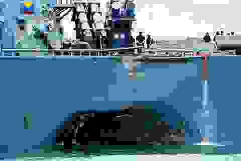 Tìm thấy thi thể thủy thủ Mỹ trong khoang tàu chiến va chạm với tàu dầu