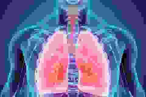 Bằng chứng mới cho thấy vitamin D có thể ngăn chặn nhiễm trùng đường hô hấp
