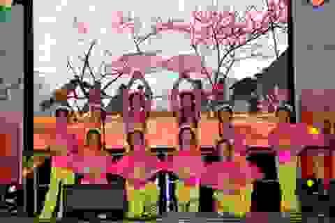 Đại sứ quán và cộng đồng người Việt ở Đức đón mừng Xuân Đinh Dậu