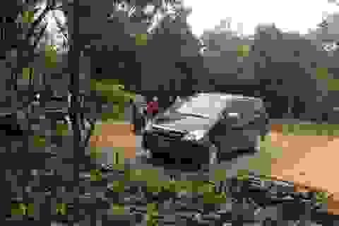 Phó Thủ tướng yêu cầu làm rõ vụ xe công đi lễ chùa giờ hành chính