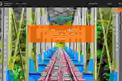 Giải thưởng sáng tác ảnh từ điện thoại trên quy mô toàn cầu, giá trị 1,3 tỷ đồng