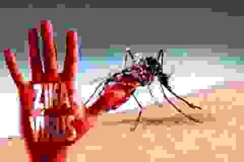 TPHCM: Chỉ còn duy nhất 1 quận huyện chưa bị dịch Zika tấn công