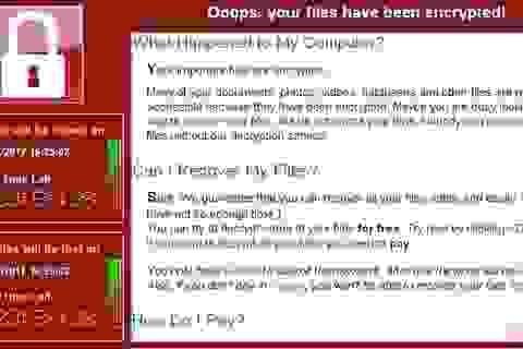 """Một doanh nghiệp không thể lập báo cáo tài chính đúng hạn vì… """"dính"""" virus"""