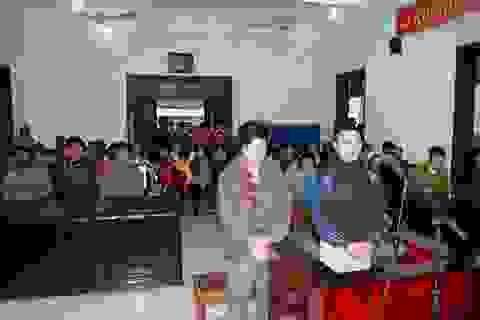 Gần 9 năm tù giam cho 2 nông dân phá chanh leo