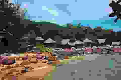 Những điểm lặn ngắm san hô siêu hấp dẫn tại Việt Nam