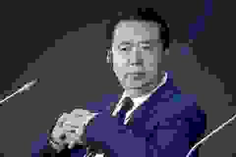 """Vai trò tại Interpol của cựu Thứ trưởng Công an Trung Quốc vừa """"sa lưới"""""""