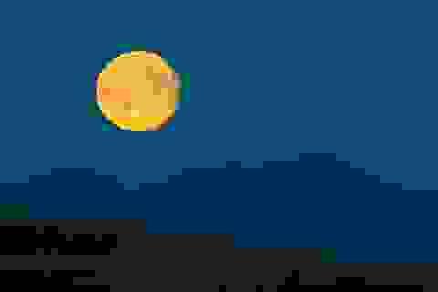 Mẩu đá mặt trăng có giá tương đương... 12 tỷ đồng