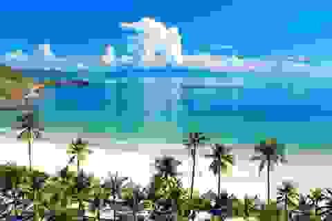 Tại sao đầu tư căn hộ cho thuê ở Nha Trang lại hiệu quả nhất cả nước?