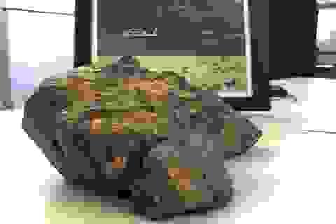 Đá thiên thạch từ mặt trăng được đấu giá 600.000 USD