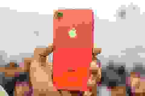 iPhone XR vẫn ế ẩm tại Việt Nam