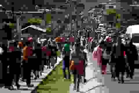 Mỹ tính đưa 1.000 binh sĩ chặn đoàn người tị nạn ùn ùn kéo tới biên giới