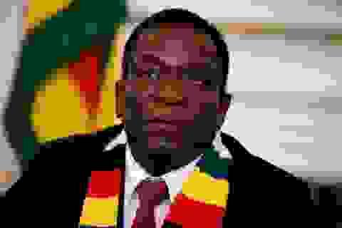Tổng thống Zimbabwe bất lực nhìn nền kinh tế nước nhà sụp đổ