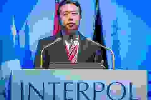 Vị trí cấp cao do người Trung Quốc nắm giữ tại các tổ chức quốc tế