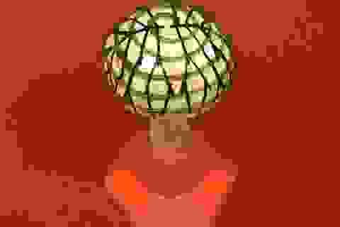 """Nấm có thể được sử dụng tạo ra """"điện sinh học"""" trong tương lai"""