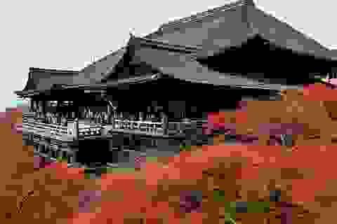 Mở đường bay thẳng Hà Nội – Osaka, thúc đẩy du lịch Việt Nam – Nhật Bản