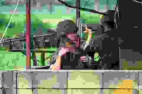 """Hàn - Triều dỡ 20 chốt quân sự tại """"nơi nguy hiểm nhất thế giới"""""""