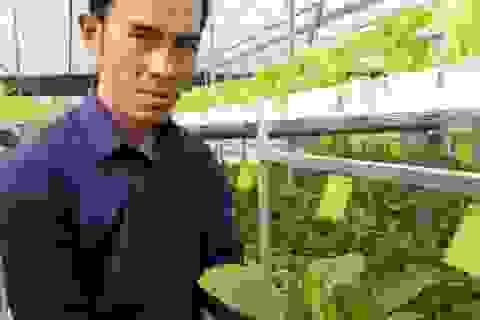 Kỹ sư bỏ việc nhà nước về trồng rau thủy canh, lãi 60 triệu/tháng