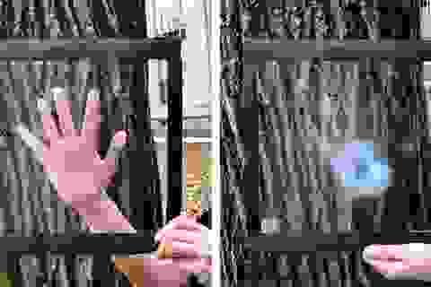 Khám phá tấm film cách nhiệt đặc biệt có thể thay thế… máy điều hòa!