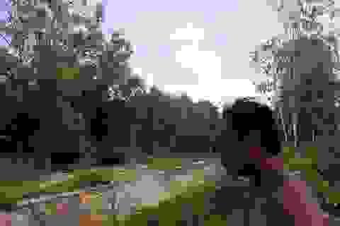 """Những trại chăn nuôi lợn """"tra tấn"""" người dân tại Bình Định!"""