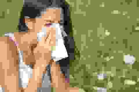 Làm gì để hạn chế viêm mũi dị ứng?
