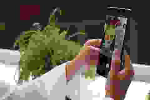 Cuộc đua smartphone đa camera và những người tiên phong
