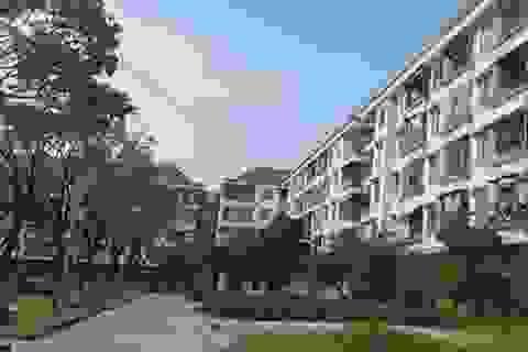 Hàng trăm trường hợp cho công chức thuê chung cư sai đối tượng