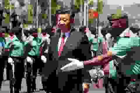 Thông điệp chuyến thăm đầu tiên của lãnh đạo Trung Quốc tới chủ nhà APEC 2018