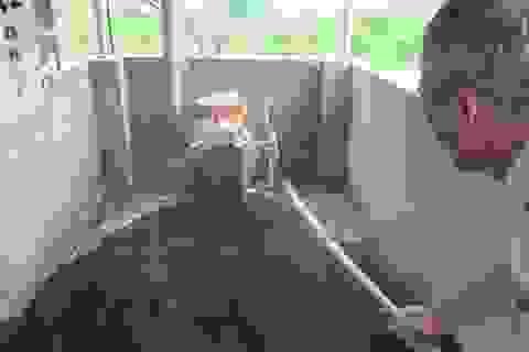 Dự án Lcasp đưa giải pháp xử lý tối ưu đến các trang trại