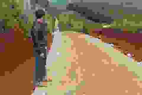 """Sáng tỏ vụ nhà thầu thi công """"nắn"""" đường tiền tỷ vào rẫy nhà mình tại Đắk Nông!"""
