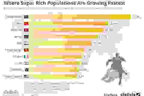 Có gì trong bộ sưu tập của tầng lớp siêu giàu?