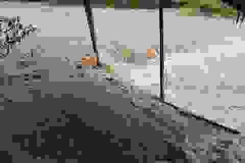 Mưa lũ cuốn phăng lán trại trên thượng nguồn Thừa Thiên Huế