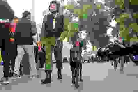 An ninh thắt chặt trên sân Hàng Đẫy, chó nghiệp vụ được tăng cường
