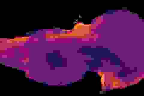 Khu vực bí ẩn trong bộ não người lần đầu được biết đến