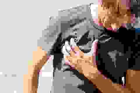 7 triệu chứng bệnh hen mà mọi người đều nên biết