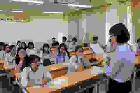 Thi học sinh giỏi: Mong các phụ huynh đừng tạo áp lực cho con
